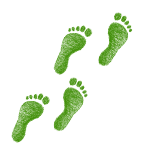 green-1968590_1920